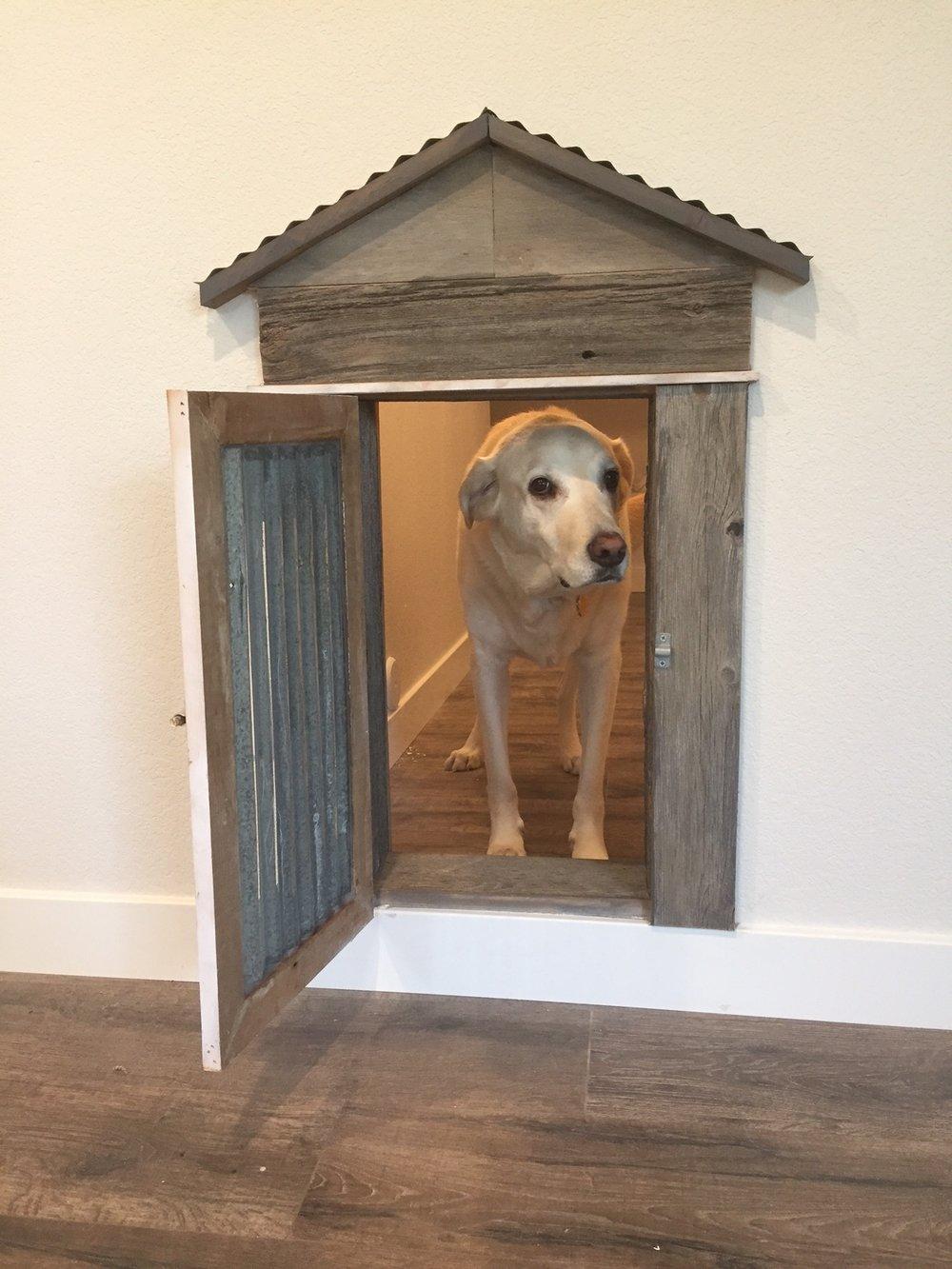 Dog reclaimed wood barn door