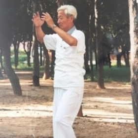 Master Zhang, Yulei