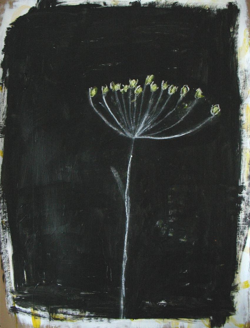 fleur de fenouil