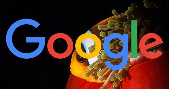 Google Fred: Thuật toán lớn của Google đang Update