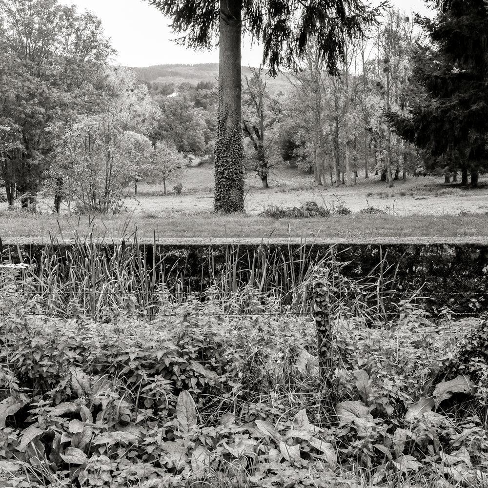 Paysage 1.jpg