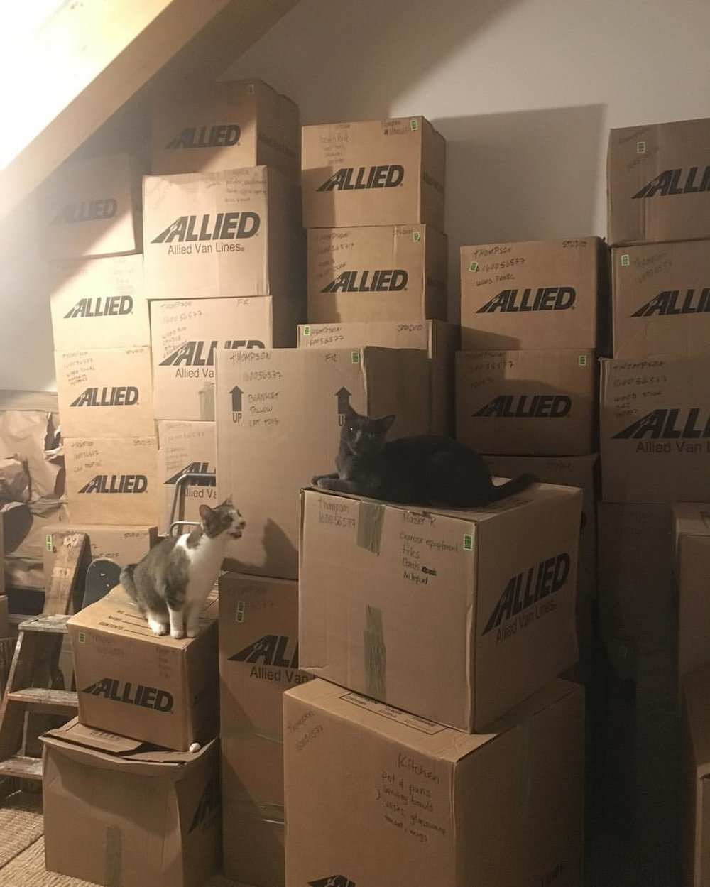 Oh, the chaos of moving! // ©2016 Kelli Thompson