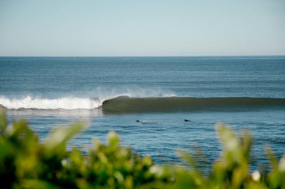 hmb-surf-7.jpg