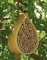 mason bee house.jpg