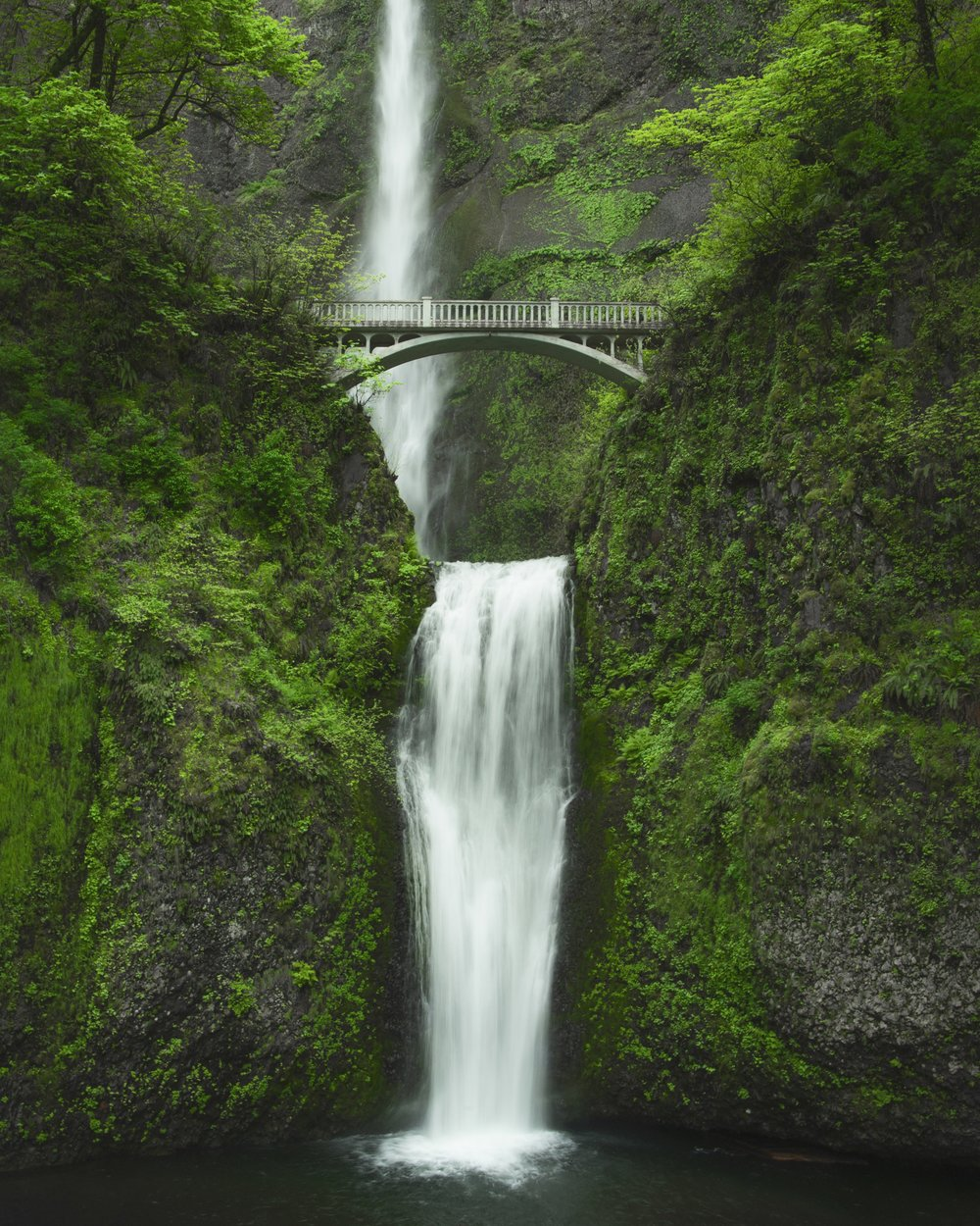 Multnomah Falls 8x10 SMALL.jpg