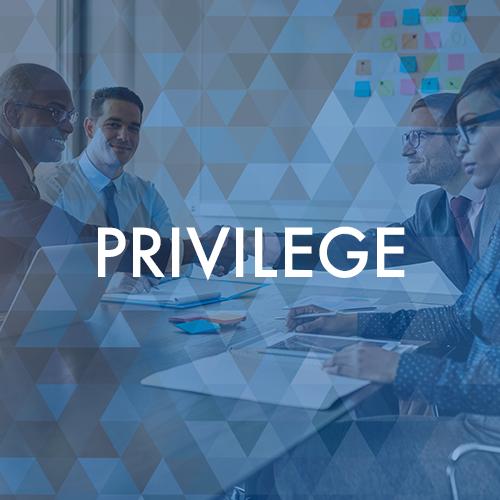Privilege Tile Pivot4.png