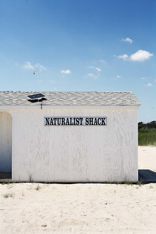 Naturalist-002.jpg