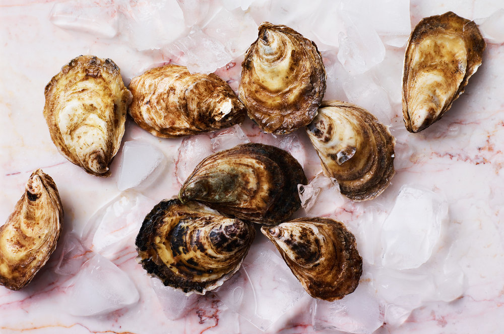 Oyster-Party_0214.jpg