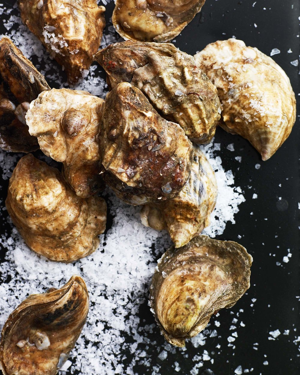 Oyster-Party_0172.jpg