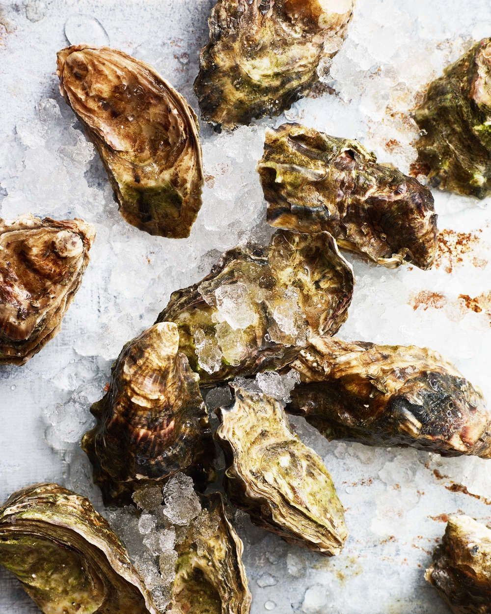 Oyster-Party_0231.jpg