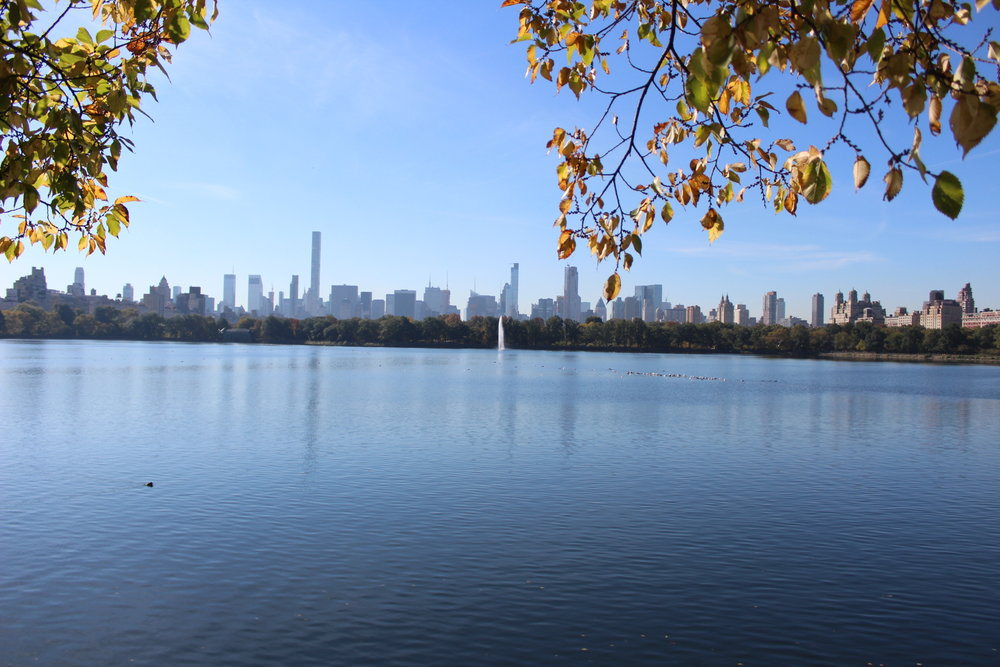 View of New York City from Central Park (2017)