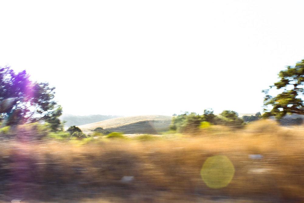 Apparent Horizon