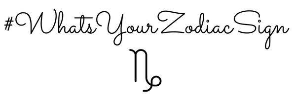 capricorn zodiac makeup banner