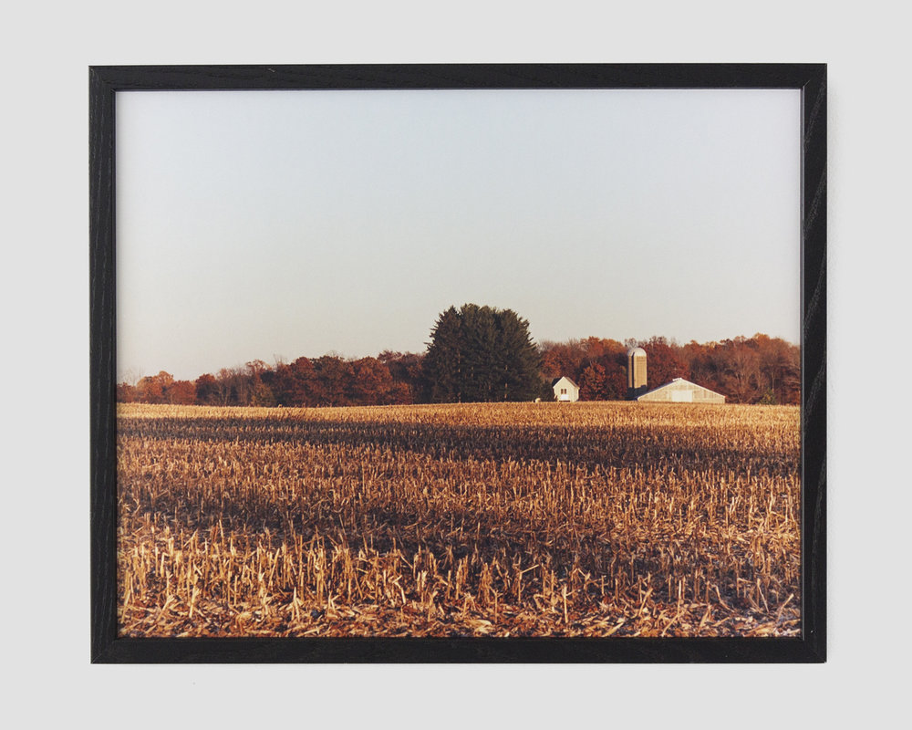 chromogenic color print  16 x 20 in.