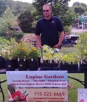 Lupine Gardens