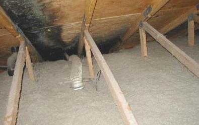 Bathroom exhaust fans must vent to the outside of the home via a roof or wall vent. This is just one reason why I recommend peeking into your attic once in a while