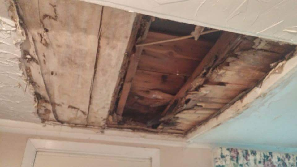 Sometimes I get strange looks from people when I tell them that a ceiling is sagging. It's better to know ahead of time than to wait for this to happen.