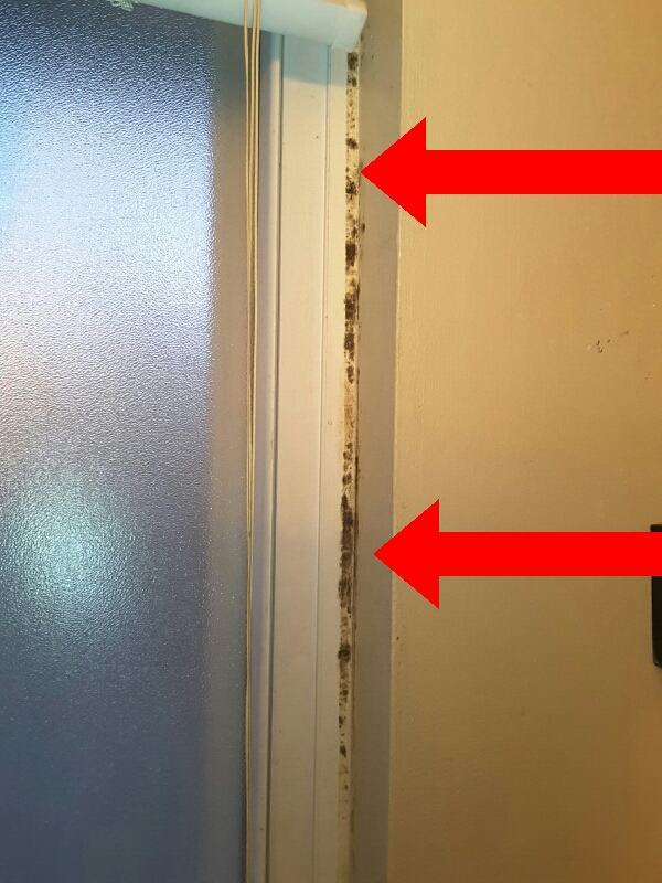 Mold and mildew growth is common at bathroom grout and caulk and when ventilation is poor or missing