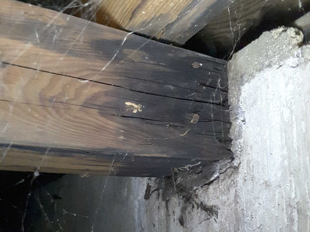 "Beam in crawlspace was so rotted out that you could crush it with your fingers. A 1/2"" gap is recommended around the beam pocket to allow air circulation and prevent wood rot."