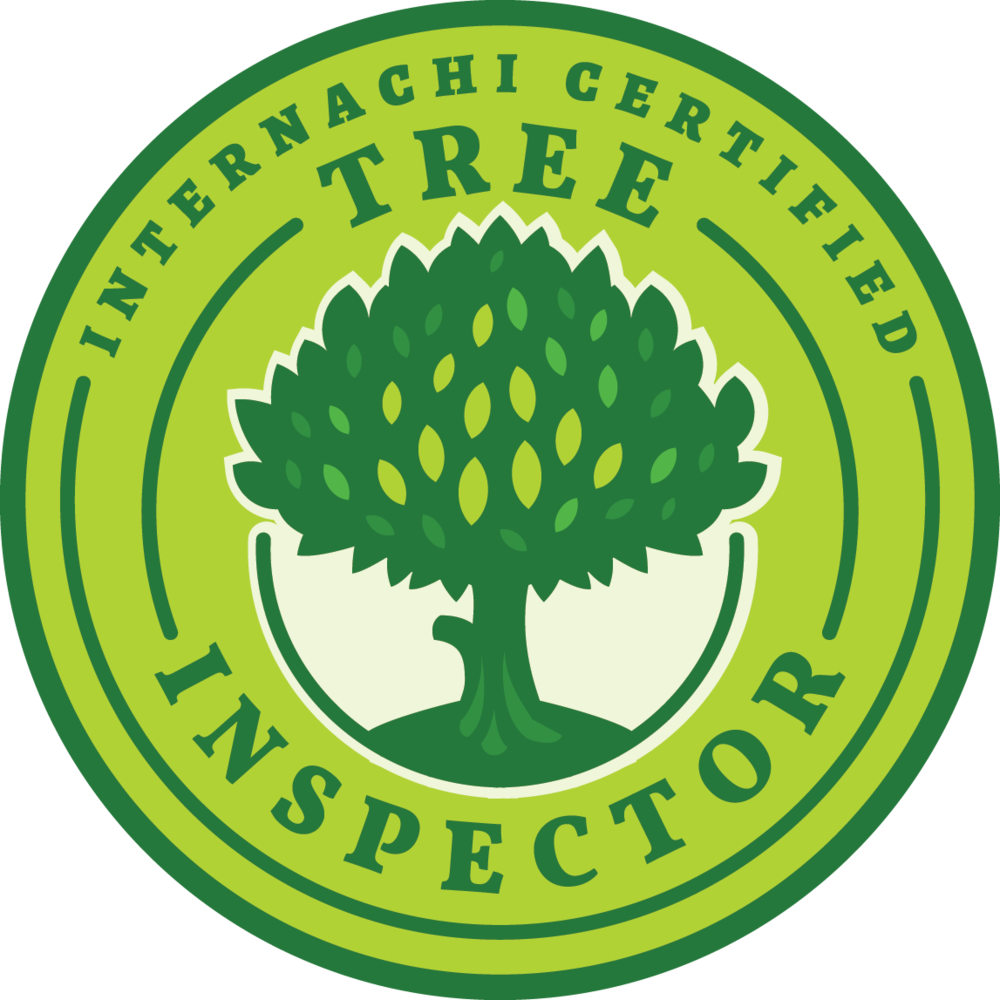 Best Home Inspectors Loveland
