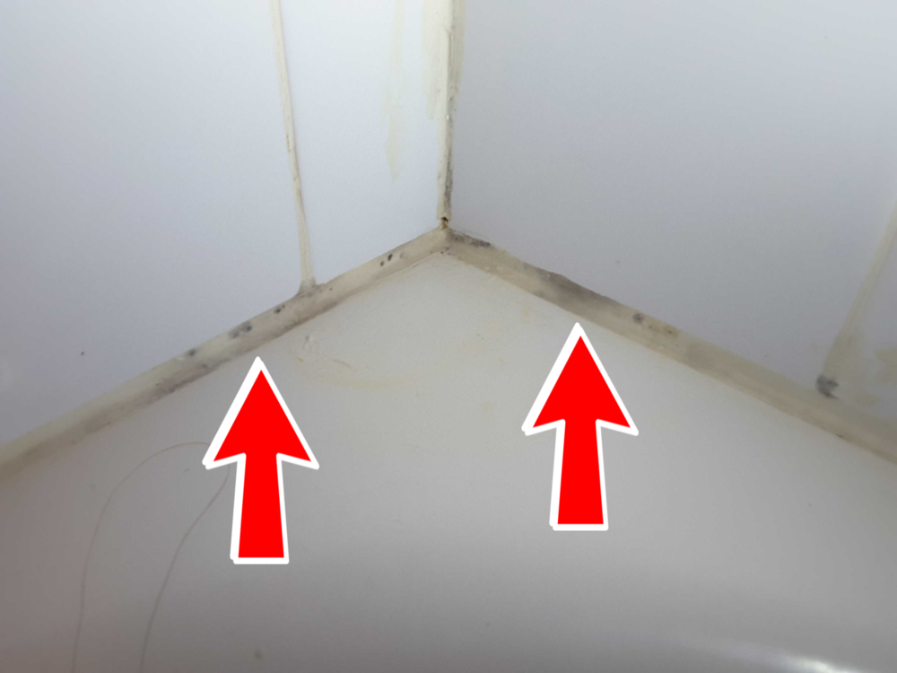 Bathroom grout and caulk is a common place to find mold growth, the issue may just be on the surface or could indicate a larger issue behind the tile or enclosure. Call me to schedule a complete mold inspection of your home.
