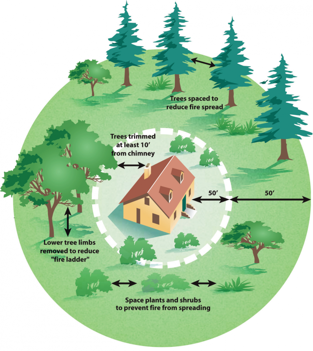 Defensible Space is the area around a structure where combustible vegetation has been cleared, reduced or replaced. This space acts as a barrier between a structure and an advancing fire. I inspect many mountain properties where little thought has been given regarding defensible space.