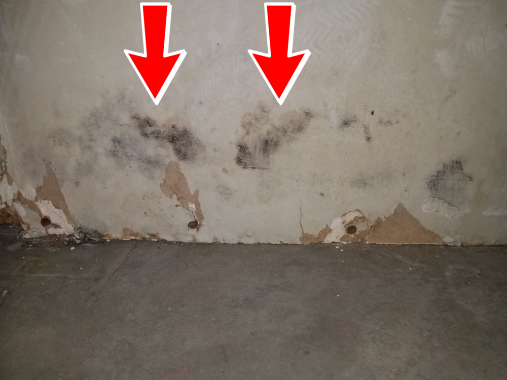 Mold growth in drywall indicates a past leak behind the wall, this area was dry at the time of the inspection, however when mold dries, the spores become airborne.