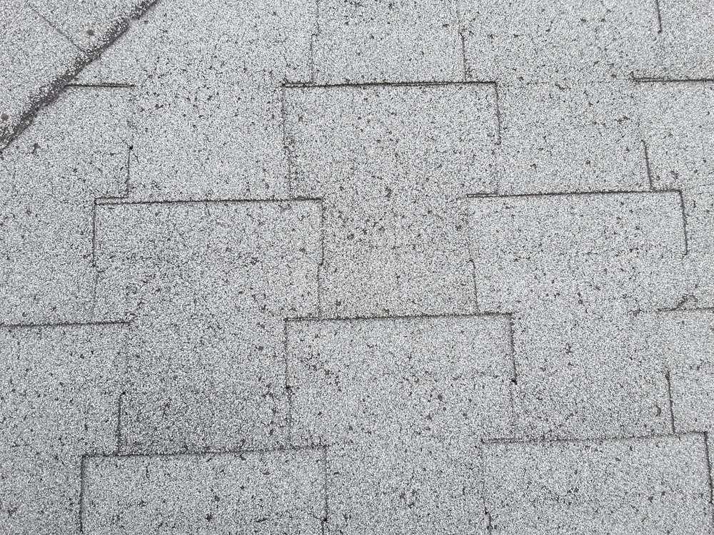 Small blisters on asphalt roof shingles are not an issue and usually caused by poor ventilation in attic. Also found when there are multiple layers of shingles on the roof.