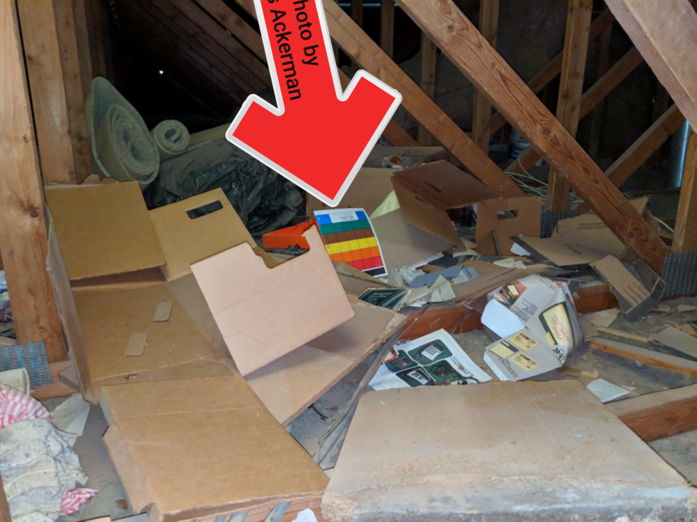 I can't tell you how many times I've seen an attic looking like a trash dump. If you like to store trash in the attic, you must also like rodents & termites.
