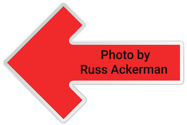 I now include this arrow in all my photos posted on social media as I've caught several inspectors using my photos online. Hire only the best.