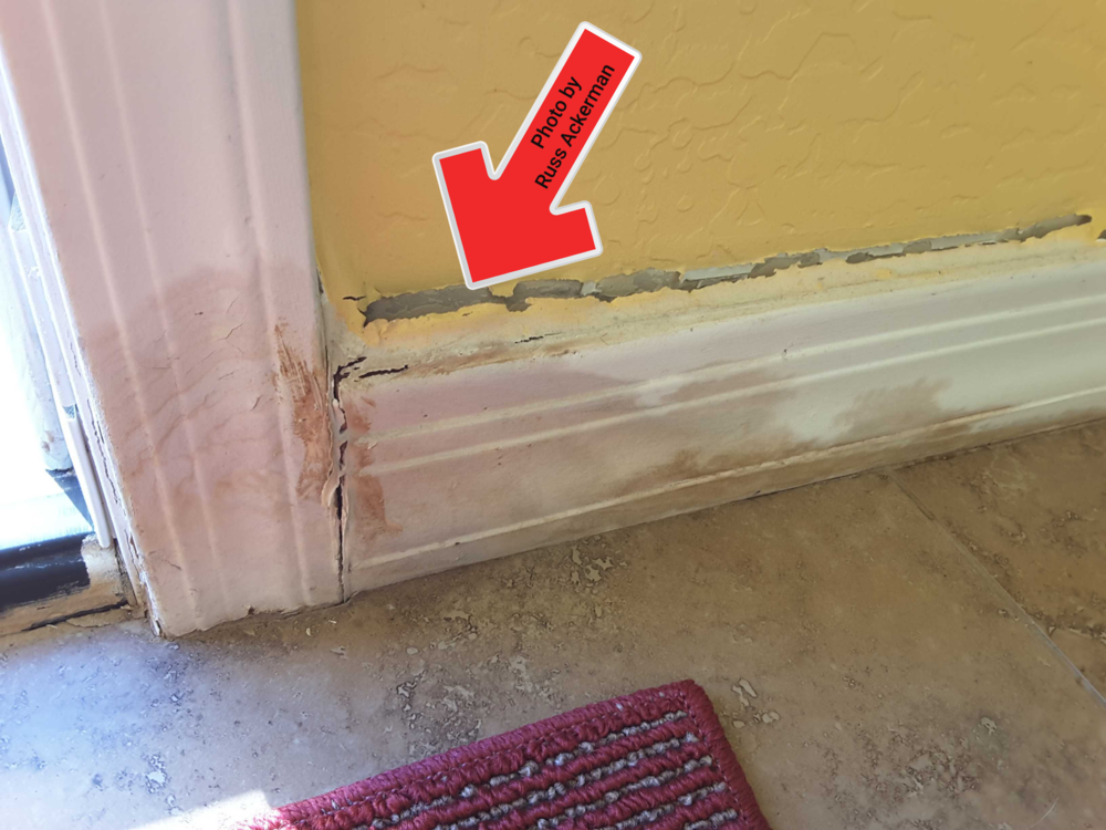 Moisture intrusion from exterior doors is a sign of poor installation. Water damage creates conditions conducive to termites and mold.