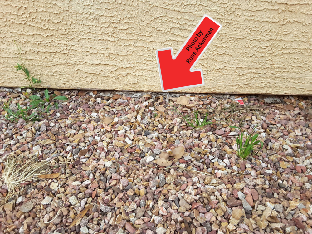 "Stucco siding should be a minimum of 2"" away from hard surfaces or rocks, we now have a concealed foundation and conditions conducive to termites."