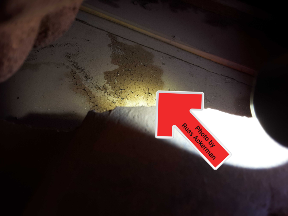 This 11-year old tile roof already has alligatoring and deterioration at the underlayment. An upcoming expense to plan for.