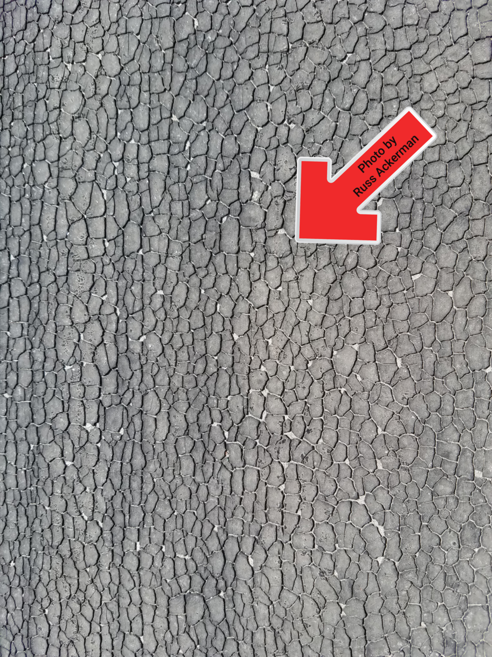 Alligatoring is another term for widespread cracking of a roof surface or underlayment indicating it's near the end of its lifespan.