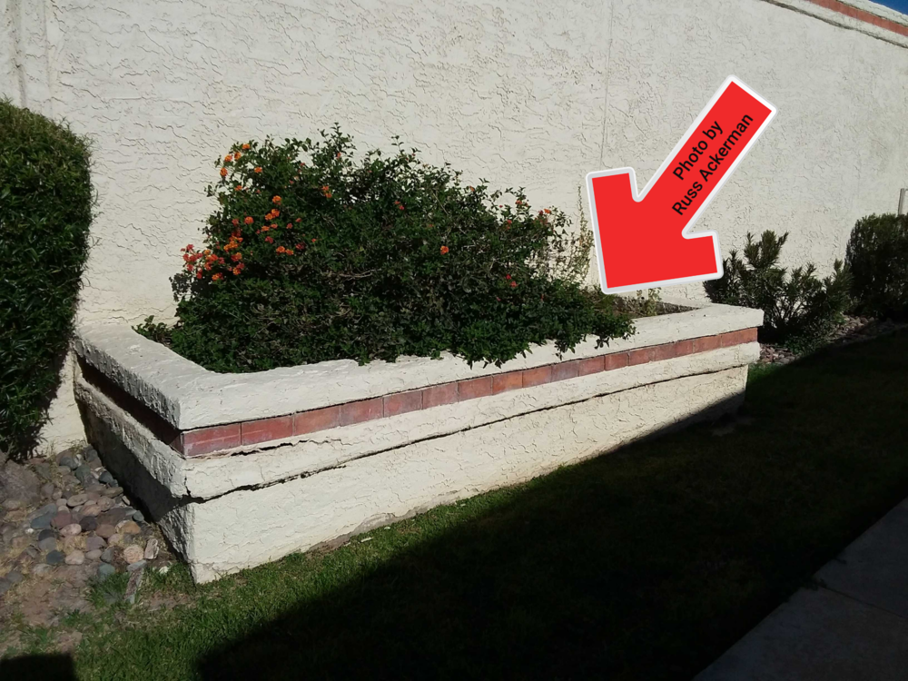 Landscaping planters next to the home are a poor idea, they hold moisture against the wall, create potential water entry and settling issues.