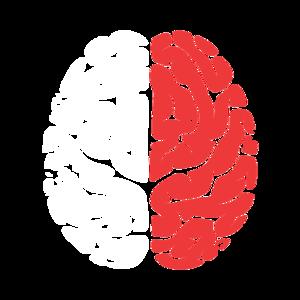 Skill-brain.png