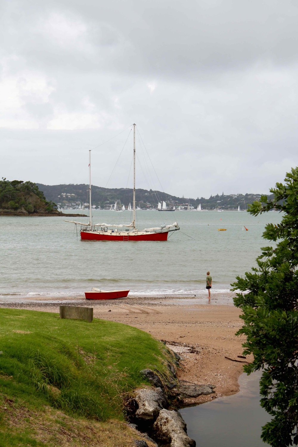 Paihia, Bay of Islands, 2008 ©