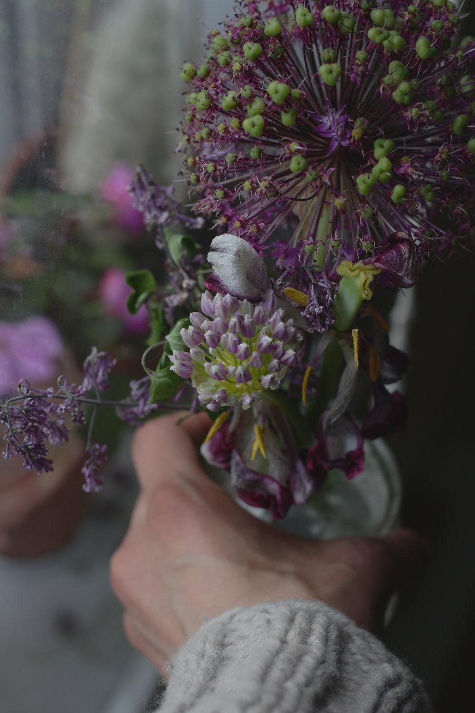Vestiges du printemps : tulipes, lilas, allium