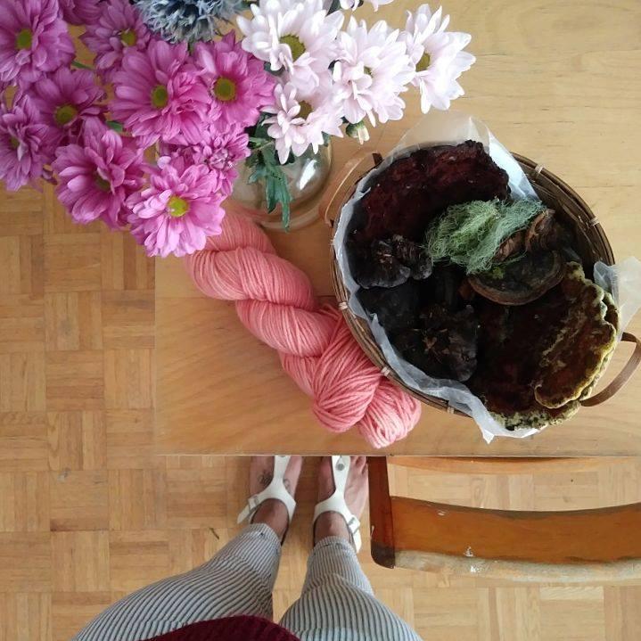 Rose bonbon d'un bain d'épuisement de racines de garance et champignons teinturiers