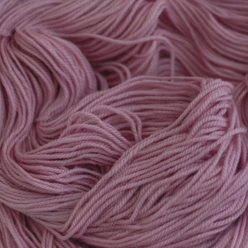 SODA ASH     Cochineal   Dactylopius coccus