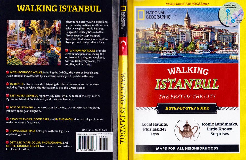 NG Walking Istanbul CU.jpg
