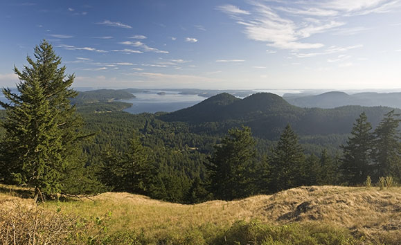 San Juan Islands in Summer