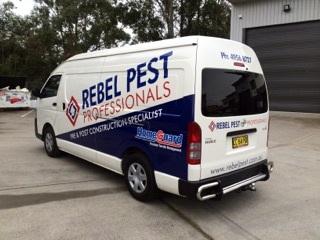 Rebel Pest.jpg