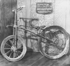 103_blondins-bike.jpg