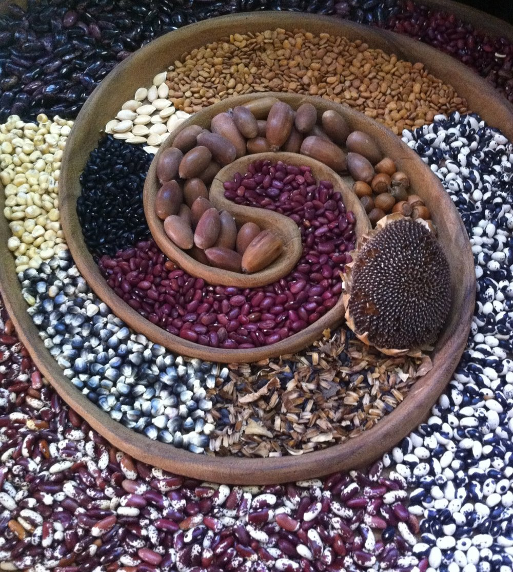 Seed Spiral.JPG