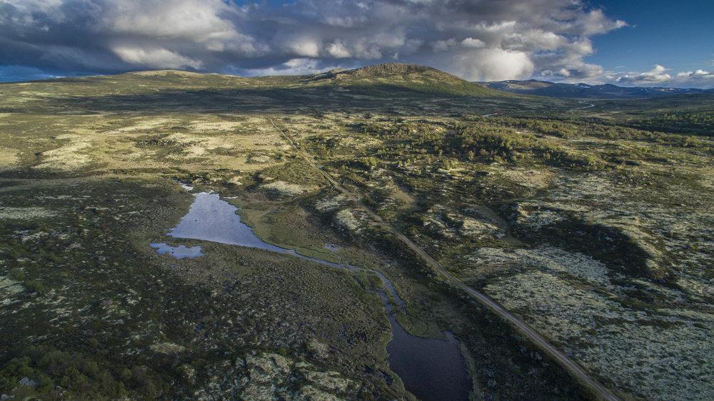 Kongevegen over Hjerkinnhø. Foto: Matti Bernitz