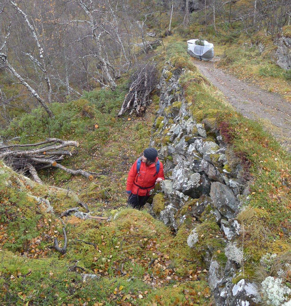 Rebecca Nedregotten Strand befarerer Vårstigens tørrmurer. Foto: Marit Johansson