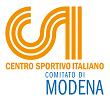 logo-csiModena-2011_H100.png
