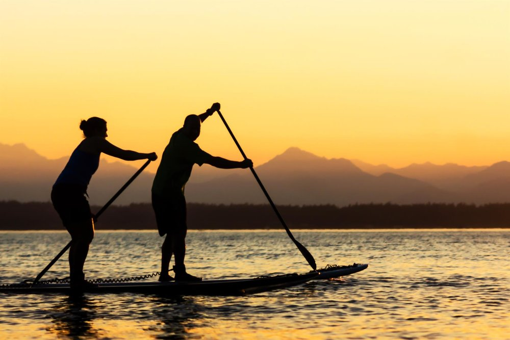 paddle surf 6.jpg