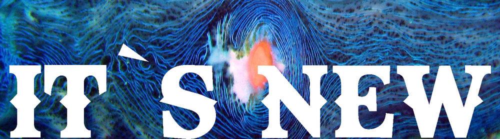 slider-new-in.jpg